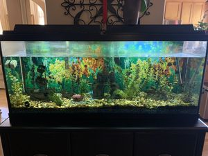 Large Fish Tank for Sale in Chula Vista, CA