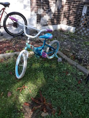 Froze bike for Sale in Chicago, IL