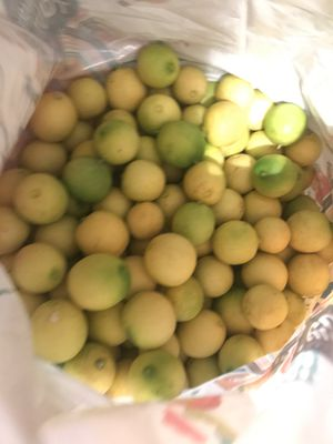10 pounds of limes for Sale in Ontario, CA