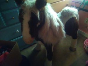Furreal Friends S'mores Pony for Sale in Tacoma, WA