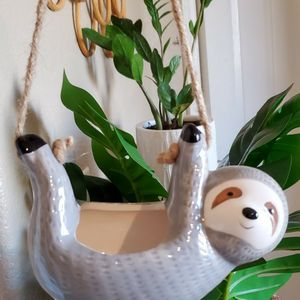 Cute Sloth Succulent Pot for Sale in Goodyear, AZ