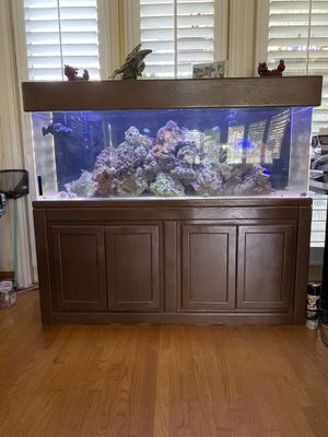 Acrylic aquarium 100 gallons for Sale in Villa Park, CA