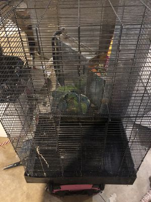 Animal cage for Sale in Festus, MO