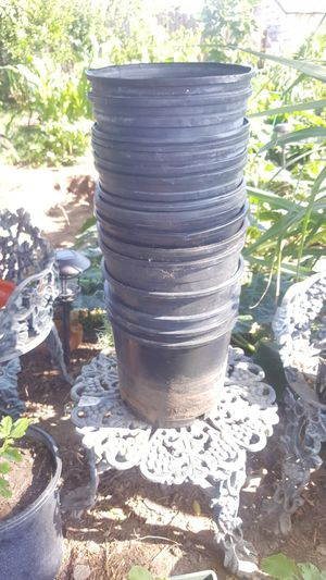 PLASTIC POTS 15GALLONS 9IN. HEIGHT for Sale in San Diego, CA