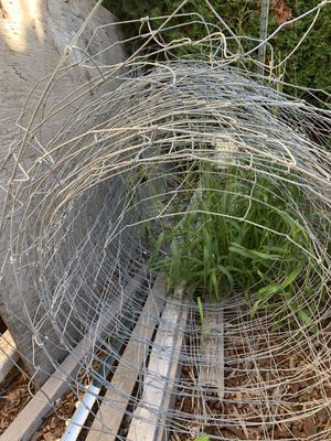 Fencing for Sale in Mount Angel, OR