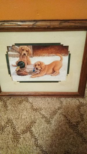 Puppies playing picture for Sale in Marshfield, MO