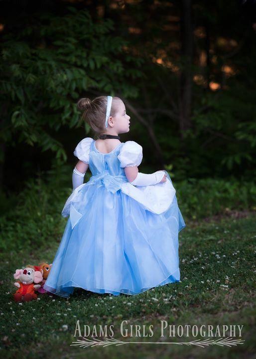 Disney themed Princess Dress - Christmas Present