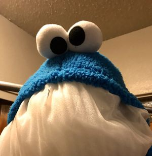 Sesame Street Cookie Monster Teen or Adult for Sale in Fresno, CA