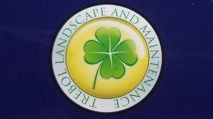 Trebol Landscape and Maintenance for Sale in Menifee, CA
