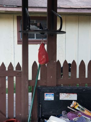 Speed bag for Sale in Baytown, TX