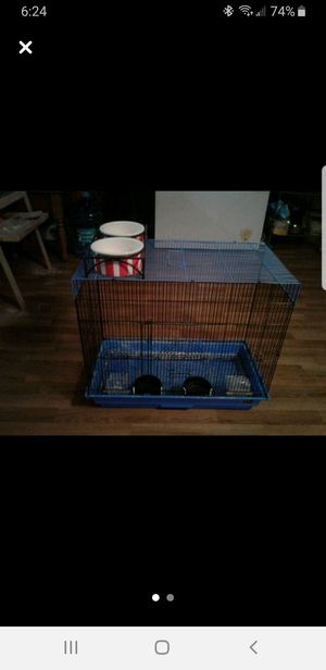 Bird cage and dog bowl for Sale in Lutz, FL