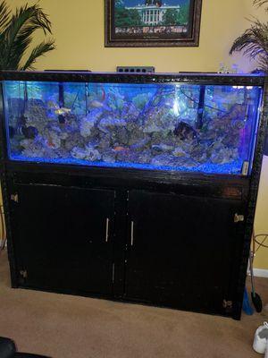 Aquarium custom built cabinet. for Sale in Ellenwood, GA