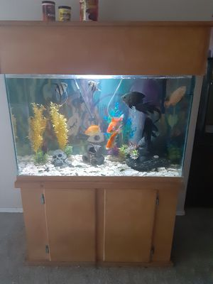 Fish tank for Sale in Tonto Basin, AZ