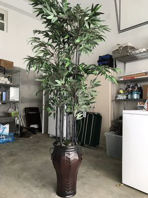 7 feet tall 4 feet wide bamboo decorative plant for staging with pot for Sale in Mercer Island, WA