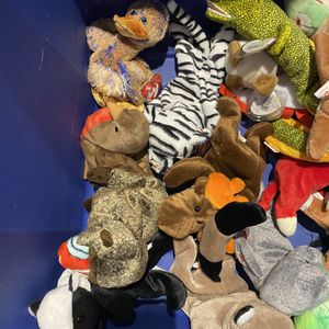 Lot Of TY Beanie Babies for Sale in Tampa, FL