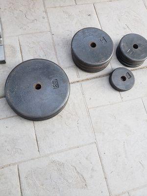 Bench press/ ez curl bar/ weights for Sale in Phoenix, AZ