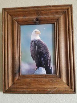 Small Eagle Picture for Sale in Malaga,  WA