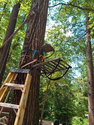 Tree Stand for Sale in Harrisonburg, VA