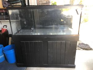Complete Freshwater Planted Aquarium for Sale in La Habra Heights, CA