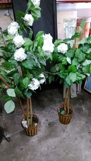 Fake plant decor for Sale in Akron, OH