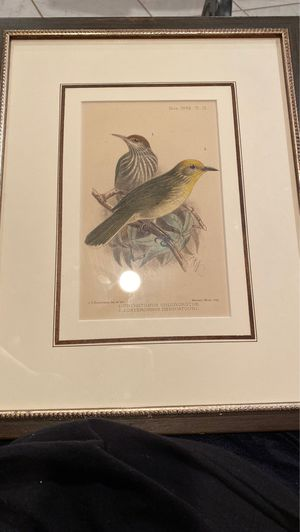 Two piece Painting birds for Sale in Houston, TX