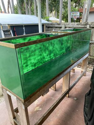 160 gallon custom fish tank/aquarium for Sale in Miami, FL
