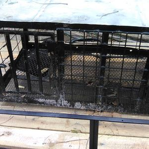 Dog Box for Sale in Bartow, FL