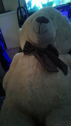 Teddy Bear for Sale in Portland, OR