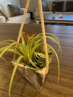 Hanging Fake Succulent Plant for Sale in Brighton,  CO