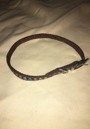 Small dog collar for Sale in Orlando, FL