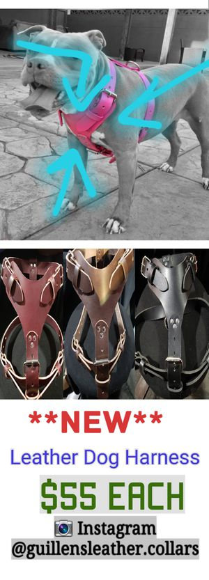 Leather harness for Sale in Bloomington, CA