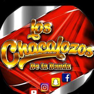 Banda CHACALOZA for Sale in Los Angeles, CA