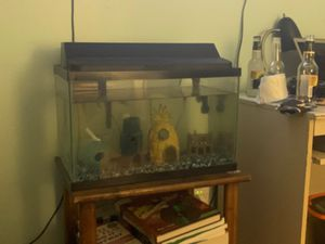 10 GALLON FISH TANK (OPTIONAL ADD ONS) for Sale in Queens, NY
