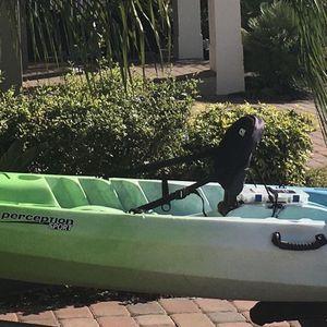 Motorized Kayak with Trailer for Sale in Winter Garden, FL