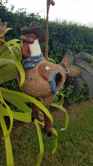 Cowboy rooster birdhouse, adorable for Sale in Port St. Lucie, FL