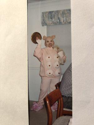 Pig costume for Sale in Fairfax, VA