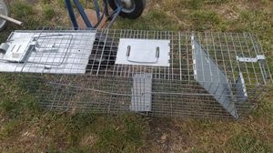 racoon trap for Sale in Wantagh, NY