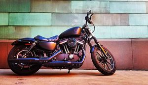 2020 Harley Davidson Iron 833 for Sale in Morrison, CO