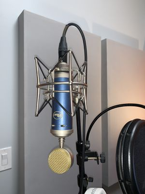 Bluebird SL large diaphragm condenser microphone for Sale in Chicago, IL