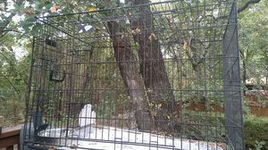 Dog cage for Sale in Bedford, TX