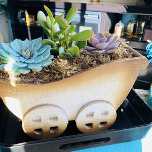 Beautiful Colorful Succulent Plant Arrangement in wooden Cart for Sale in Los Angeles, CA