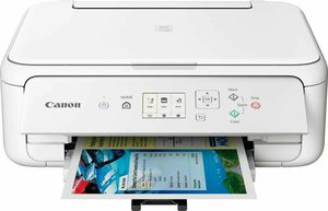Brand New WHITE Canon PIXMA TS5120 Wireless All-in-One Color Inkjet Printer for Sale in Detroit, MI