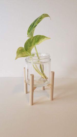 Mini plant stand for Sale in Chicago, IL