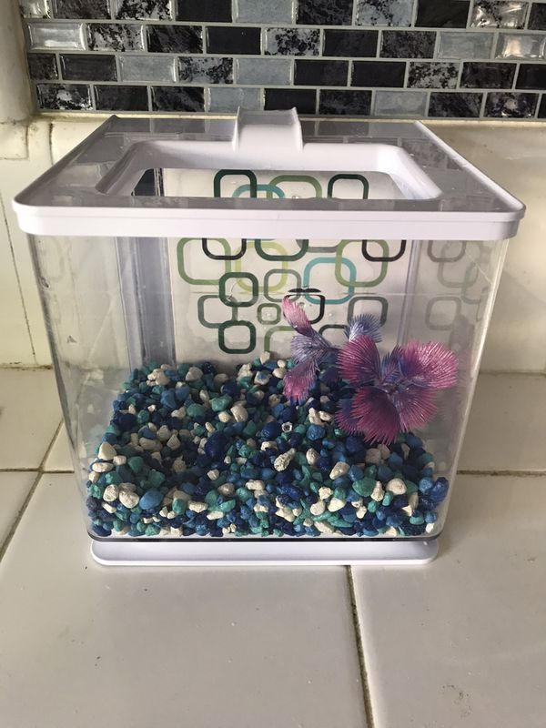 Small Automatic filtered water fish tank with fishes included