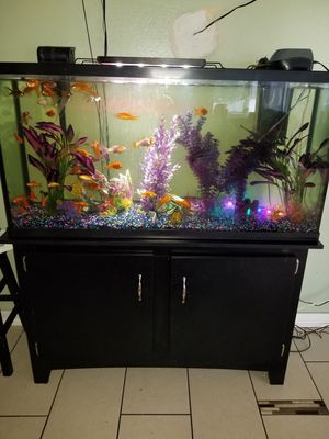 Fish tank for Sale in Tooele, UT