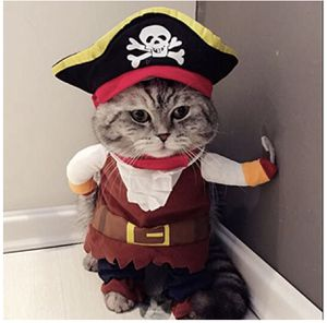 Pirate Dog/Cat Halloween Costume 🎃 for Sale in Los Angeles, CA