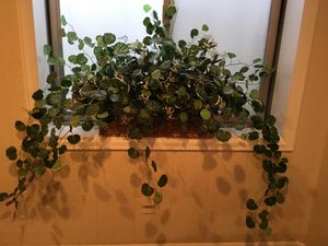 Silk plant in basket for Sale in Highlands Ranch, CO