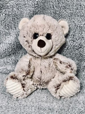 Velvety plush stuffed toy teddy bear in new condition for Sale in Tampa, FL