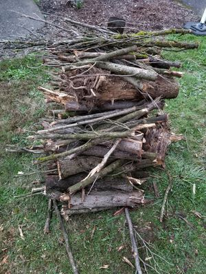Free firewood! for Sale in Oregon City, OR