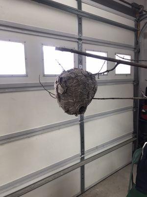 Hornets Nest for Sale in Bear Creek Village, PA